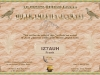30MDG SA-10 Award Certificate #0392